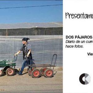 banner_2pajaros